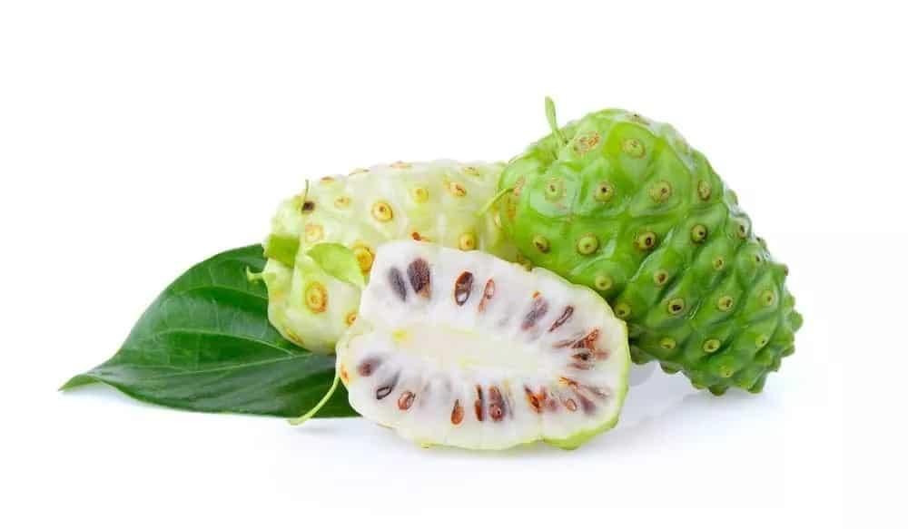 فاكهة النوني